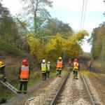 Feuilles-Automne-SNCF-LigneJ